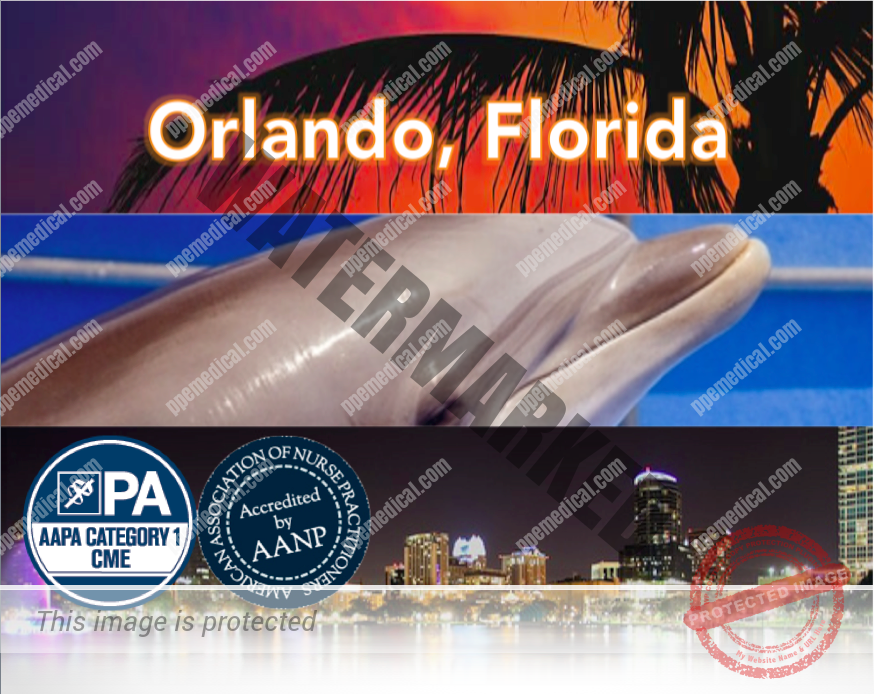 PPE Medical Workshop Orlando Florida
